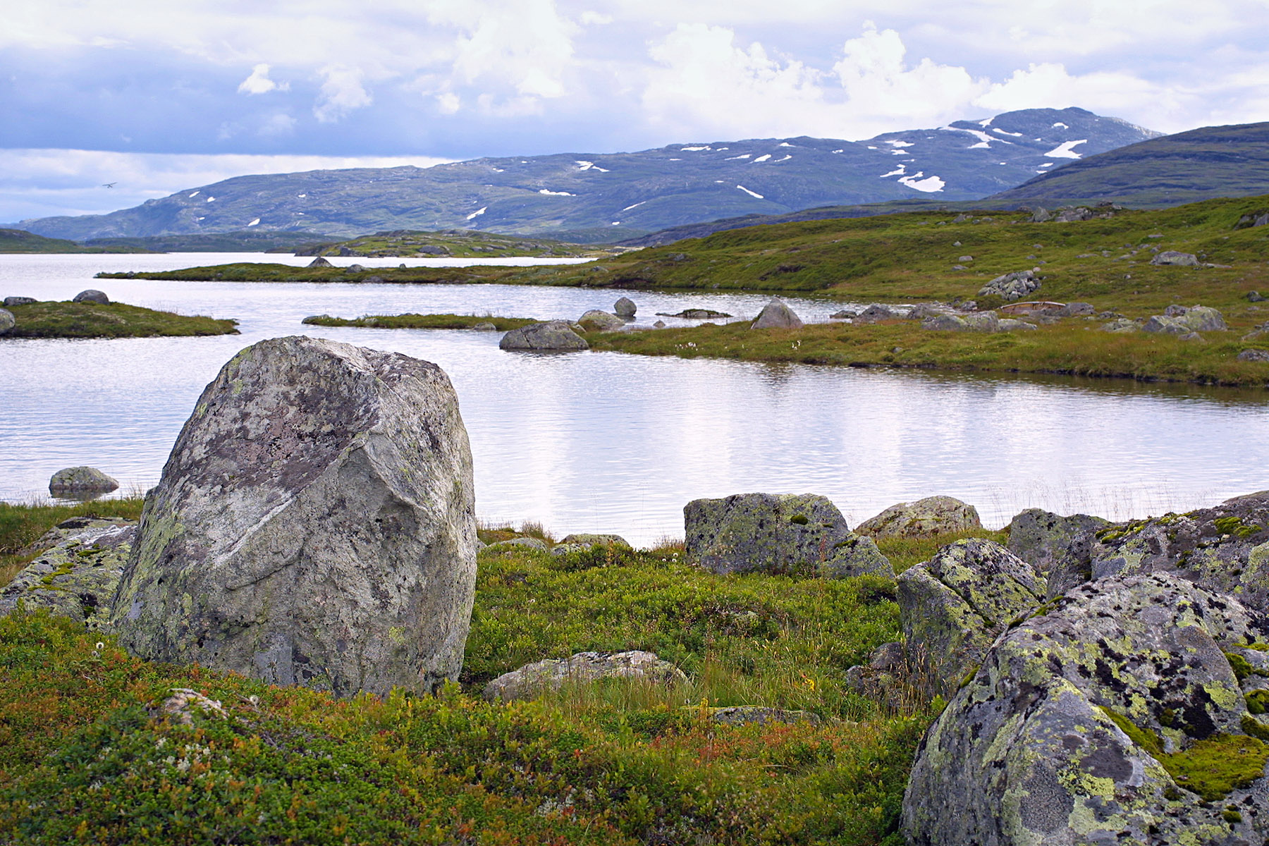 jacquet_tra_norway_16